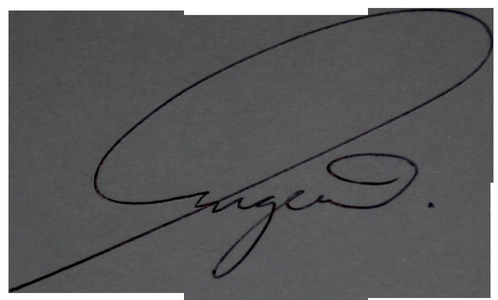 http://nvstom.ru/wp-content/uploads/2015/11/eugenie-signature.png